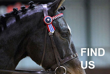 Highfield Equestrian at Howe Find us