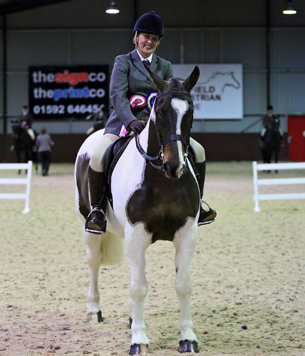 Highfield Equestrian at Howe Coloured Cob