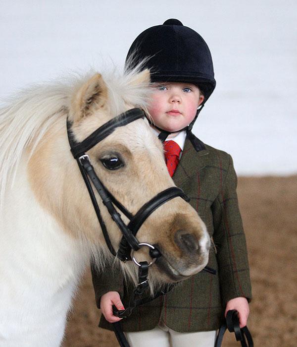 Highfield Equestrian at Howe Shetland pony